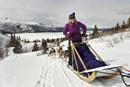 dogs_8887thumb Abenteuerurlaub in Kanada: Mit sechs Hundestärken unterwegs