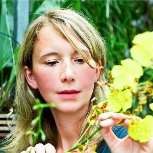 Orchideengarten-Karge-Marei-Karge-Liphard-square-300x300 Orchideenkönigin hält Hof auf der Internationalen Orchideenwelt 2015 in Dresden