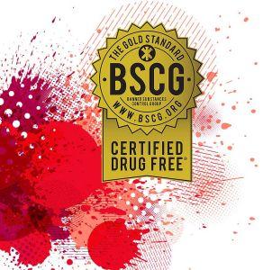 BSCG-292x300 Forever Green / FGXpress setzt weitere Milestones in der Networkindustrie