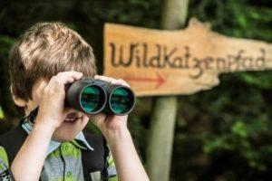 BadHerrenalb_Outdoor_klein-300x200 Baumtelefon, Husky-Trekking, Klanggarten & Co. Auf Outdoor-Abenteuer in Bad Herrenalb