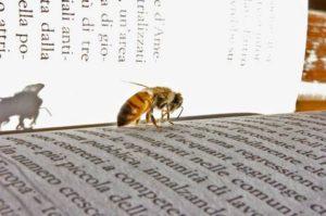 Bücher sind Bienen, die lebenszeugenden Blütenstaub von einem Geist zum andern tragen