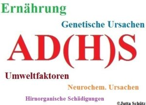 Unzureichende Versorgung mit Mineralstoffen bei ADHS