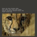 Im unberührten Afrika den wilden Tieren folgen