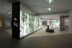 Bring Magic to Life – D'art Design Seoul Develops Brand Gallery for all the Senses