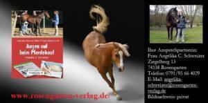 131.Bild_..PFERD_.Bild-Kopie-300x149 Das malende Pferd