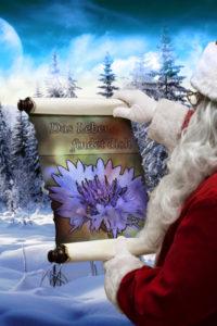 Nikolaustipp Das Leben findet dich