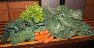 Der Winter ist da, aber auch zu dieser Jahreszeit möchte man nicht auf Gemüse verzichten