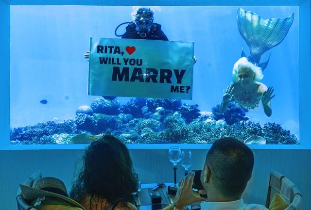 M6m_OZEN_Will-you-marry-me_web-groß Flitterwochenparadies Malediven Mit Atmosphere Hotels & Resorts verfliegen die Sorgen um Nebenkosten – dank außergewöhnlichem All-Inclusive Paket