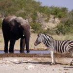 Zu Gast auf namibischen Farmen