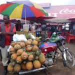 Karawane Reisen unterstützt die Stay Stiftung