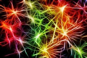 Alzheimer und die Safranknolle