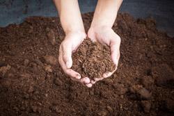 kompost kaufen, muttererde kaufen