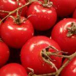 La Tomatina 2018 – Das größte Tomatenspektakel der Welt