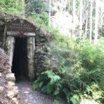 Zum 250. Geburtstag: auf Humboldts Spuren durchs Fichtelgebirge
