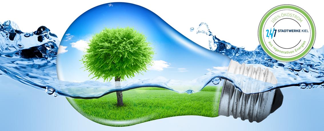 2188093 Grün, grün, grün sind alle unsere Ziele! Nuss-Trockenfrucht Spezialist KLUTH stellt komplette Produktionsstätte auf Ökostrom um