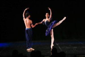 Wo Brasilien tanzt – Kulturerlebnisse in Joinville