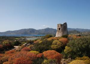 Sardinien verführt im Winter mit seiner Kulturlandschaft