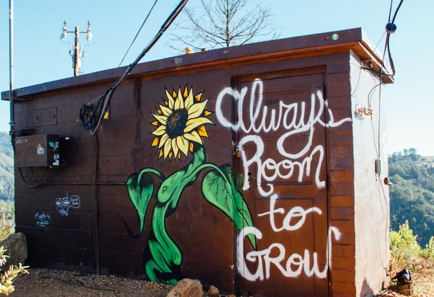 """Haus mit Schriftzug """"Always Room to Grow"""""""