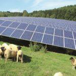 Rekordjahr 2018 für die 7×7 Solarparks