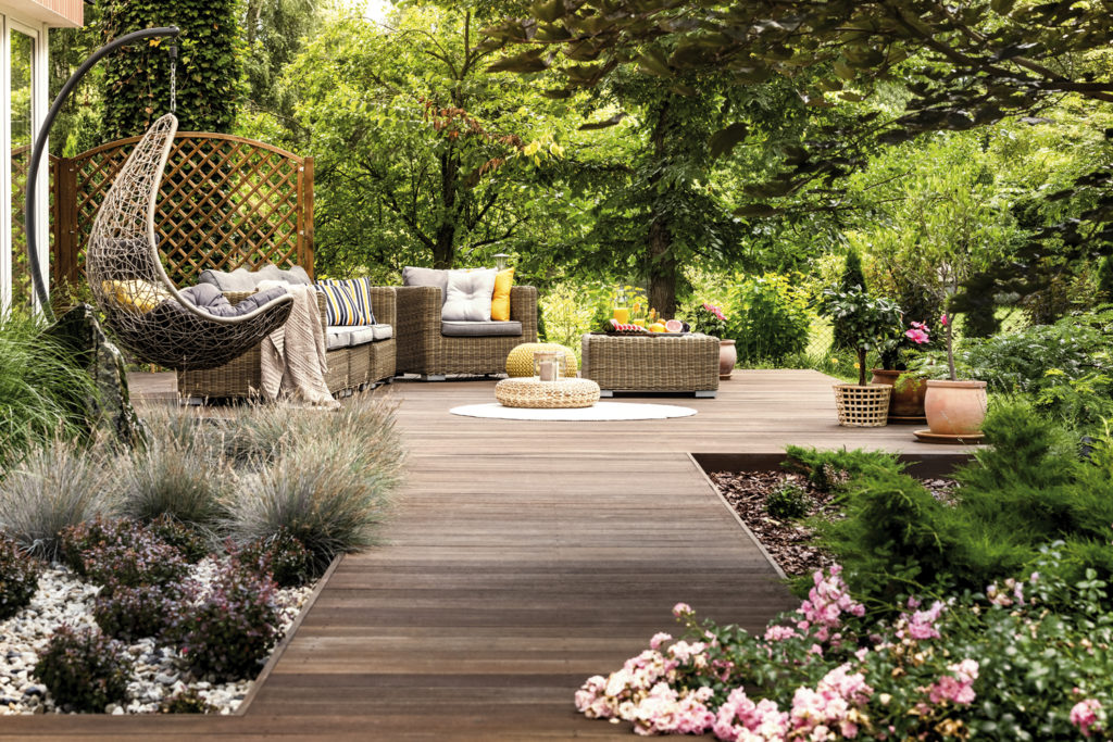Terrasse_Pflanzen-1024x683 Natürliches Anti-Aging für ergraute Holzdielen