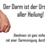 """8 Kilo verlieren in nur 6 Wochen mit Darmreinigung durch Öl-Kur! (""""Am Anfang war der Darm"""" von Dantse Dantse) – indayi edition"""