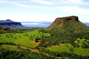 Pantanal: Brasiliens grünes Abenteuer
