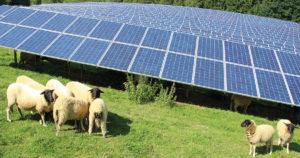 Solarpark_Dietzhoelztal-web-300x158 Solaranlagen fahren reiche Sonnenernte im ersten Halbjahr ein
