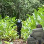 Fit für den Dschungel – So präpariert man sich für den Trip durch Guyanas Regenwald – Phänomenale Erlebnisse mit nur 9 Kilo Gepäck
