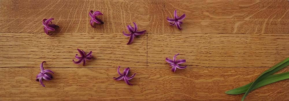 Holzboden-Pflege_1_brb Durch natürliche Pflege den Holzboden dauerhaft schützen