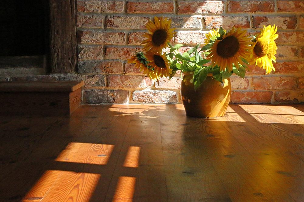 Holzboden-Pflege_5_brb Durch natürliche Pflege den Holzboden dauerhaft schützen
