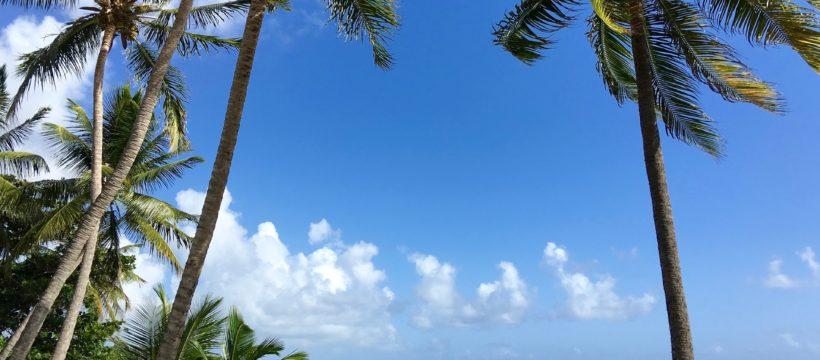 Strandk mit weißem Sand und Palmen. Azurblaues Wasser und Meer