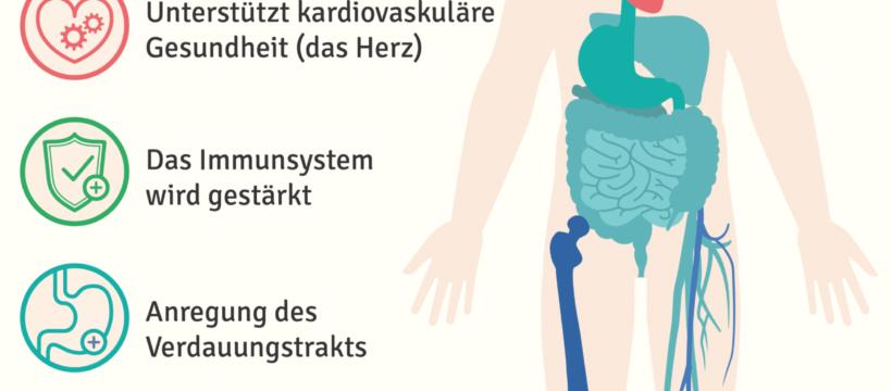 Basenkur-Basenfasten-verbessert-Körperfunktionen