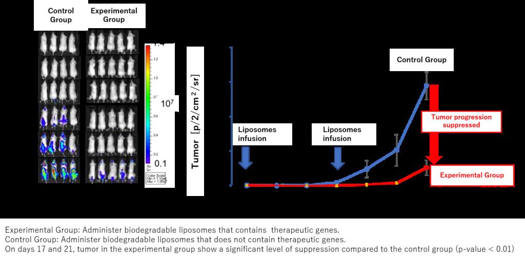 20200529_PM_Toshiba-Corporation_Shinshu-University_Abbildung-2-1024x510 Japanische Shinshu University und Toshiba entwickeln gemeinsam Liposomen-Technologie, die gezielt therapeutische Gene in Krebszellen einschleust